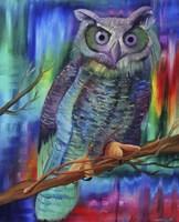Rainbow Owl Fine-Art Print