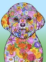 Flowers Bichon Frise Fine-Art Print