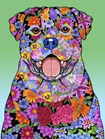 Flowers Rottweiler Fine-Art Print