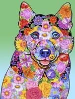 Flowers Siberian Husky Fine-Art Print