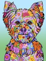 Flowers Yorkie Puppycut Fine-Art Print