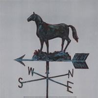 Rural Relic Horse Fine-Art Print
