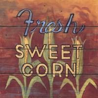 Fresh Sweet Corn Fine-Art Print