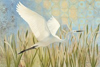 Snowy Egret in Flight v2 Fine-Art Print