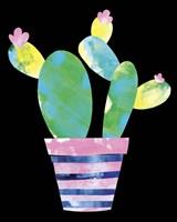 Cactus Fine-Art Print