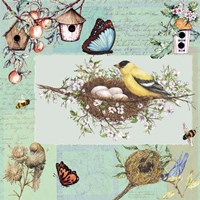 Birds & Bees Color-Blocks Green Fine-Art Print