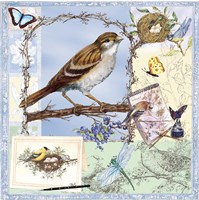 Birds & Butterfly Sketches-Blue Fine-Art Print