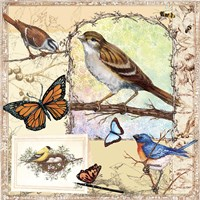 Birds, Butterflys, Bees-Pastels Fine-Art Print
