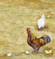 Chicken Yard Fine-Art Print