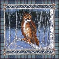 Birch Frame Plaid-Owl Fine-Art Print