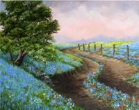 Texas Bluebonnets Crop Fine-Art Print