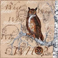 Owl In The Wildnerness Fine-Art Print