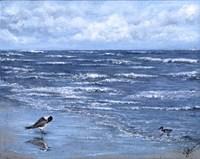 Beach Reflections Fine-Art Print