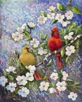 Cardinal Impressions Fine-Art Print