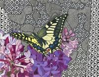 On Golden Wings Fine-Art Print