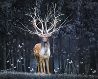 Magical Deer Fine-Art Print