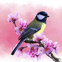 Spring Bird 3A Fine-Art Print