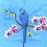 Spring Bird And Flower Fine-Art Print