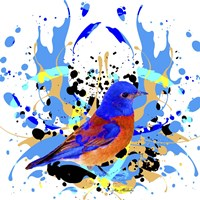 Bird Collection 13 Fine-Art Print