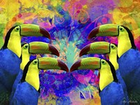 Colorful Birds A1A Fine-Art Print
