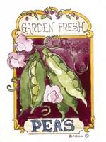 Garden Fresh Peas-Seed Packet Fine-Art Print