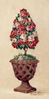 Rose Topiary II Fine-Art Print