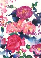 A Rose Is Just A Rose Fine-Art Print