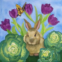 Bunny with Cabbage Fine-Art Print