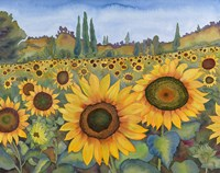 Sunflower Fields Fine-Art Print