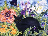 Black Cat Magic Fine-Art Print