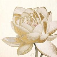 Vintage Lotus Cream II Fine-Art Print