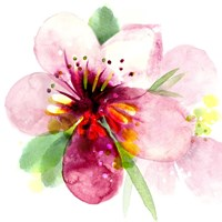 Floral Beauty I Fine-Art Print