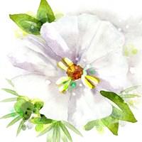 Floral Beauty III Fine-Art Print