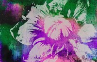 Color Pop Flower Fine-Art Print