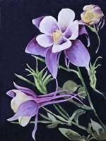 A Touch of Purple Fine-Art Print