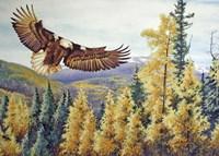 Autumn Flight Fine-Art Print
