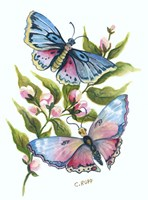 Butterfly in Pink and Blue Fine-Art Print
