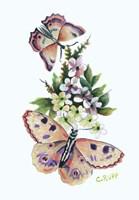 Butterfly in Pink Fine-Art Print