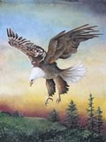 Dawn Flight Fine-Art Print