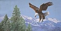 Soaring over Snowy Peaks Fine-Art Print