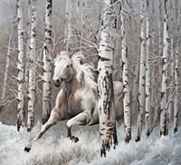 Subtle Tones of Nature Fine-Art Print
