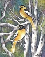 Yellow Birds Fine-Art Print