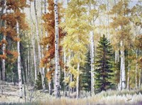 Angel Fire Aspens Fine-Art Print