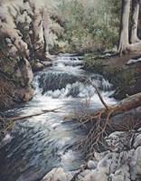 Clear Creek Fine-Art Print