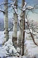 Winter Snow with Aspen Fine-Art Print