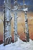Winter Sunset Fine-Art Print