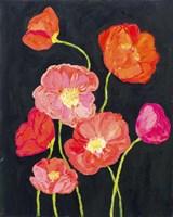 Sunshine Poppies Fine-Art Print