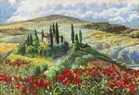 Val d'Orcia Fine-Art Print