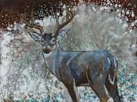 Deer I Fine-Art Print