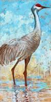 Sandhill Cranes II Fine-Art Print